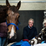 Professor Wayne Hein with final year students Suria Fabbri (front) and Jing Khuu (back) at the Equine Health and Performance Centre