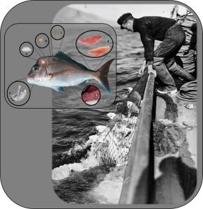 fishproxies
