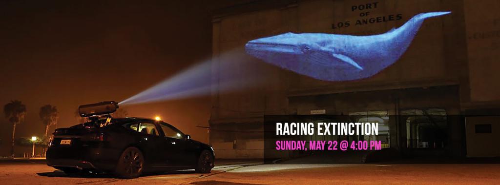 racing-extiction-film-slider-1350x500