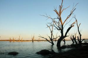 River_Murray