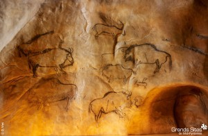 Black painting of bison (putative European bison, or wisent) at Grotte de Niaux (Niaux cave in Ariège, France), dated to the Magdalenian period (~17,000 years ago). Under Creative Commons licence.