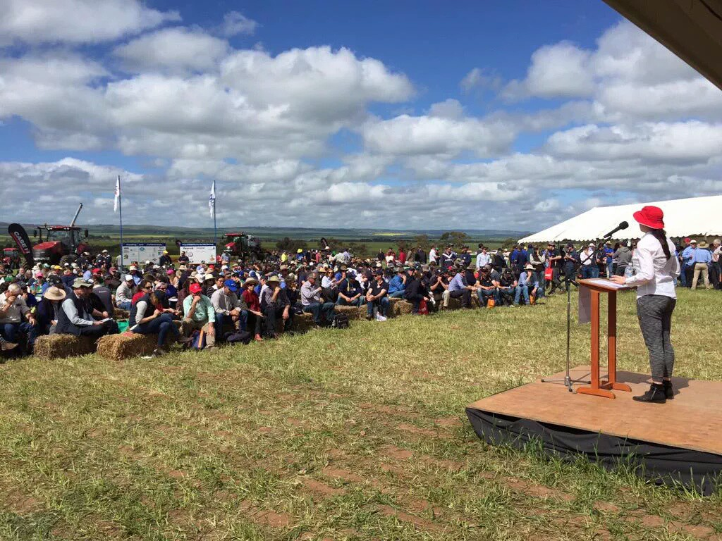 Dr Heather Bray speaking at Hart Field Day, 15 September 2015. Photo courtesy of Grain Producers SA