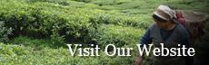 Visit the Global Food website