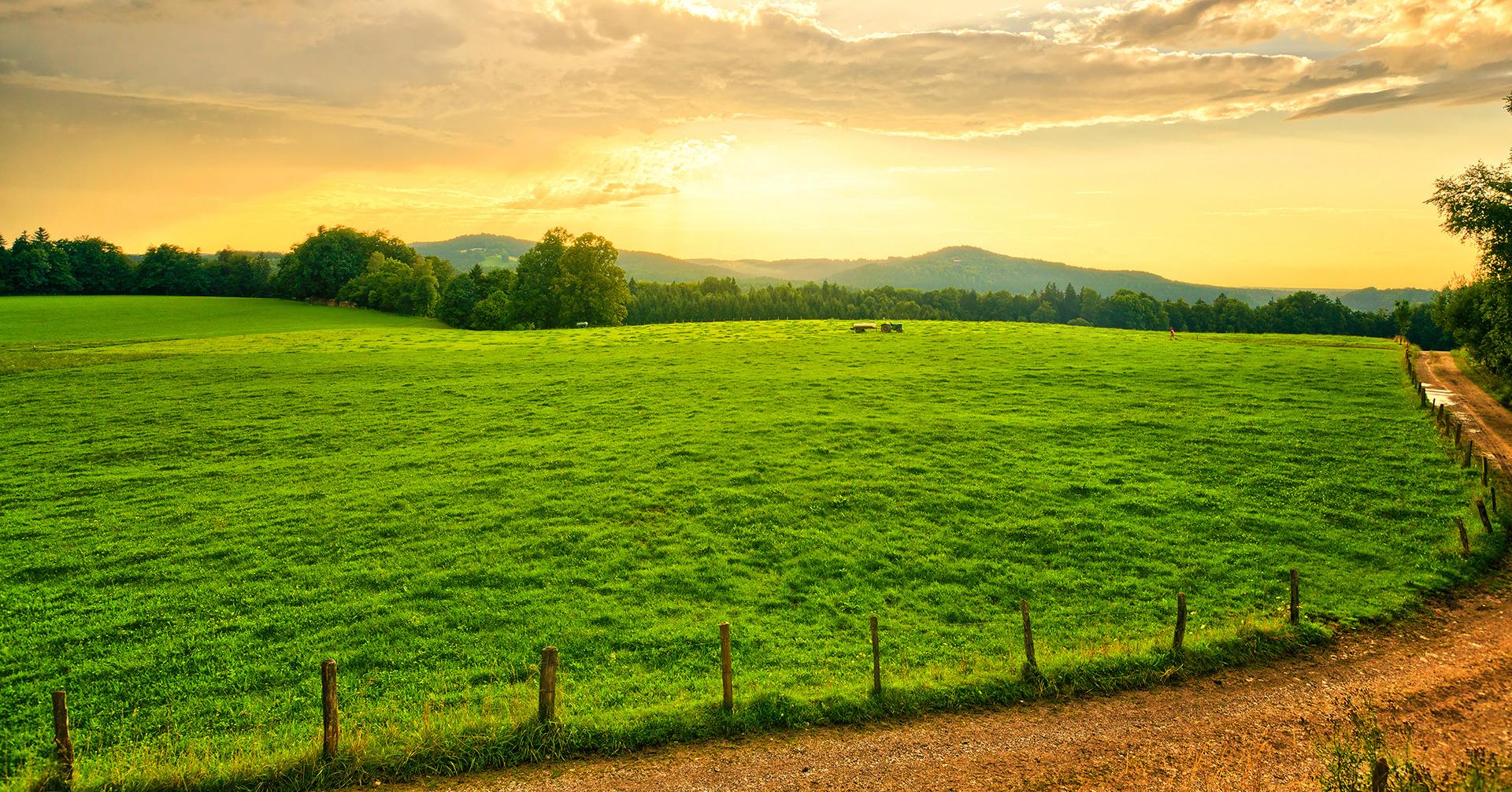 farm aust