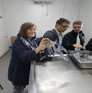 Prof. Monika Hartmann, Dr. Johannes Simons and Tom Cosentino (left to right) at Karen Holder's Blue Swimmer Crab processing facility in Outer Harbour