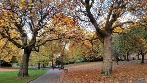 Autumn in Weston Park, Sheffield