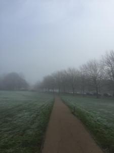 Frosty Sunday morning walks.