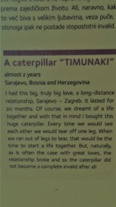 Article about the Timunaki Caterpillar at the The Timunaki Caterpillar from the Museum of Broken Relationships