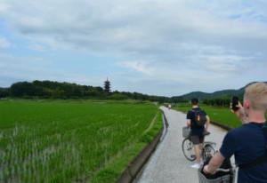 Cycling in Okayama Prefecture, 2015