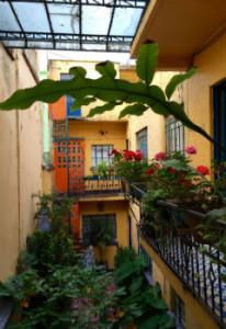 Homestay Accommodation, Mexico City