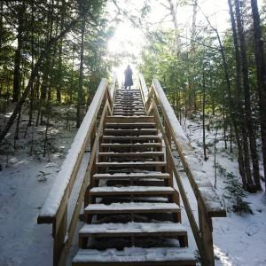 'Stairway to heaven'. Taken at Kejimkujik National Park, Nova Scotia. Insta: @gianraffmoffa