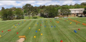 Snapshot of the obstacle course