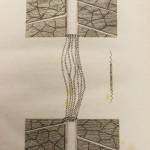 spiral_vessels_fine_leaf_2