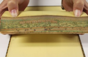 practical_sermons_fore_edge_distant_2