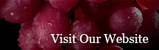 Visit the Wine Future website